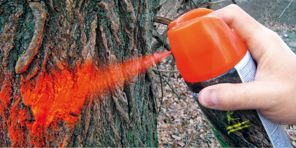 Латчбахер Україна - офіційний партнер виробника фарб для маркування Biodur