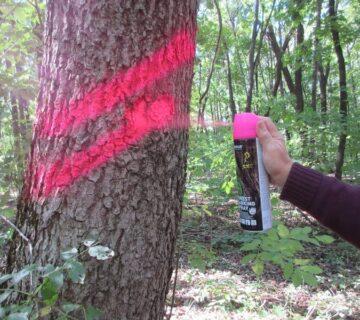 Фарба Biodur для маркування лісу